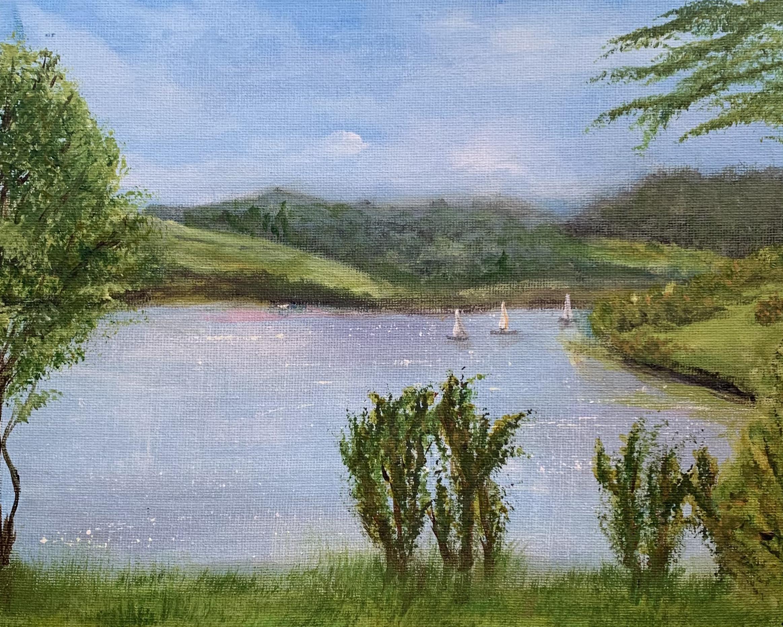 Wimbeball Lake, Exmoor